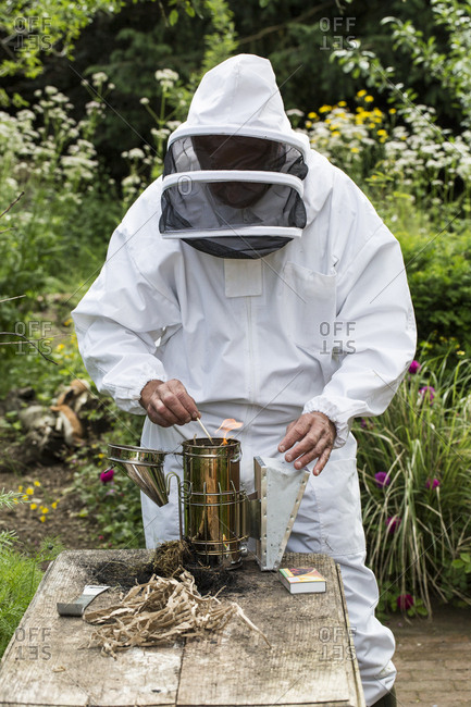 Beekeeper wearing protective suit at work, lighting fire in metal smoker to calm bees.