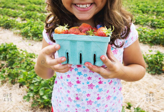 Young girl holding cardboard basket of fresh picked strawberries