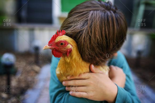 Young boy cuddling a chicken