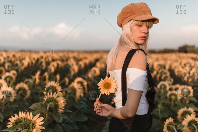 Rear view of young blonde woman with beret and denim jumpsuit hiding a sunflower in the middle of countryside in a sunset of summer