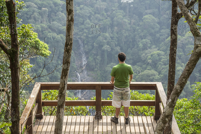 Man standing on wooden platform looking at beautiful green Atlantic Rainforest landscape when hiking in Tijuca National Park, Rio de Janeiro, Brazil
