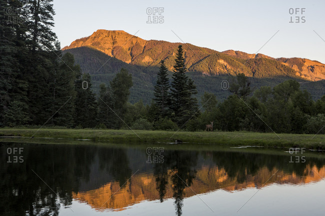 Scenic view with deer near lake and San Juan Mountains at sunset, Colorado, USA