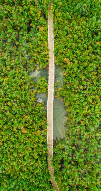 Aerial view of long wooden bridge among palm trees in Bojo river, Philippines.