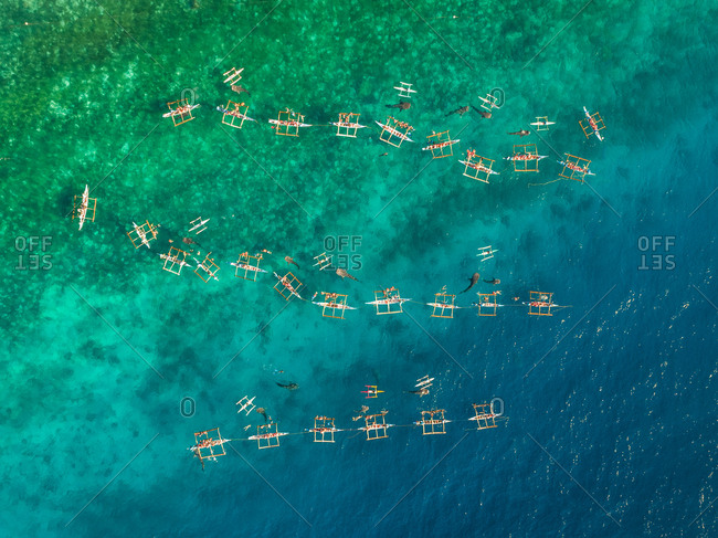 Aerial view of tourists in kayaks swimming with whales, Oslob, Philippines.