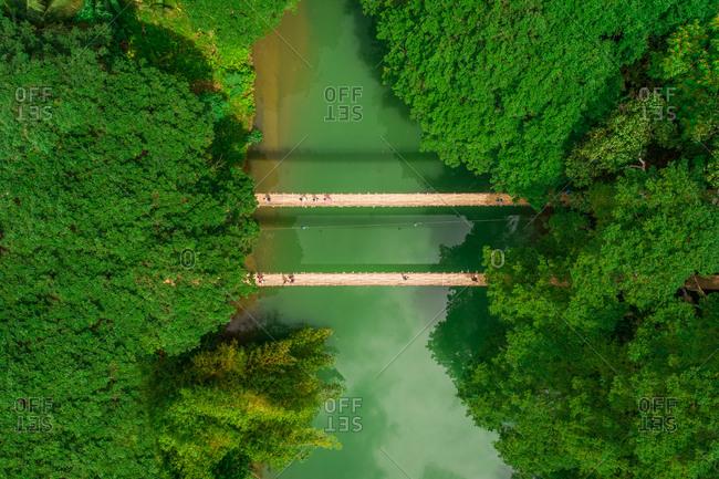 Aerial view of Sipatan Twin Hanging Bridge, Loboc, Philippines.