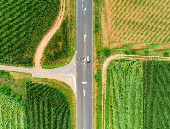 Aerial view of straight road between fields of  sunflower and corn.