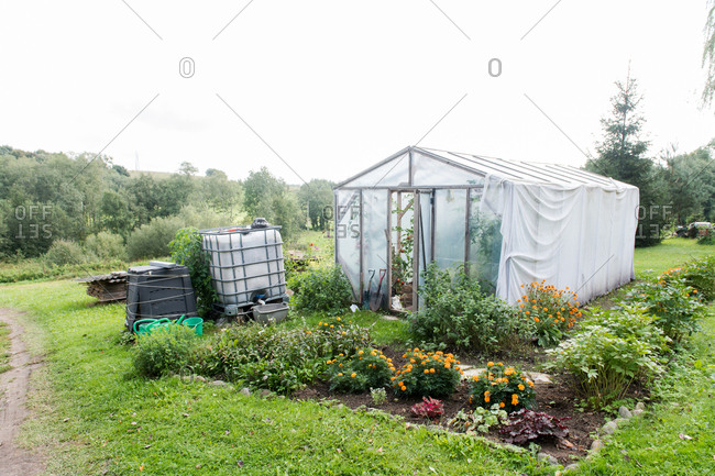 Various flowers growing around nice hothouse in green garden in beautiful countryside
