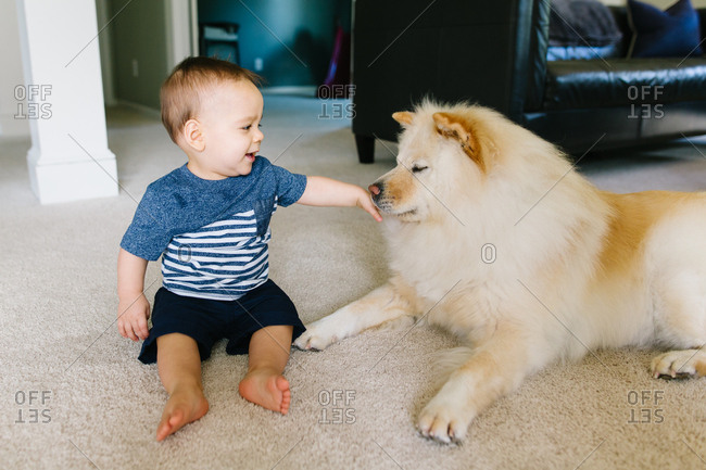 Smiling baby petting dog