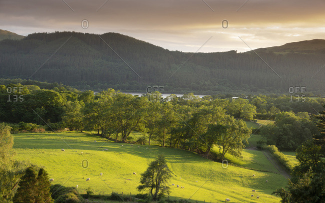 View with Bassenthwaite Lake in distance, Lake District National Park, UNESCO World Heritage Site, Cumbria, England, United Kingdom, Europe