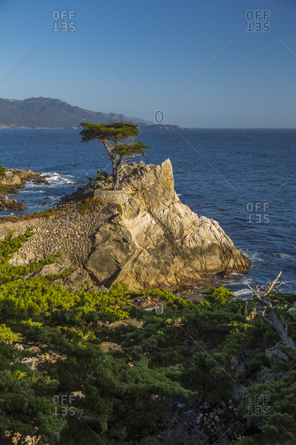 June 2, 2018: View of Carmel Bay and Lone Cypress at Pebble Beach, 17 Mile Drive, Peninsula, Monterey, California, United States of America, North America
