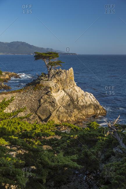 June 2, 2018: View of Carmel Bay and Lone Cypress at Pebble Beach, 17 Mile Drive, Peninsula, Monterey, California, United States of America, North America