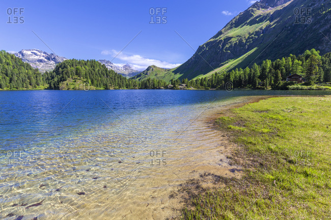 Clear water at Lake Cavloc, Forno Valley, Maloja Pass, Engadine, Graubunden, Switzerland, Europe
