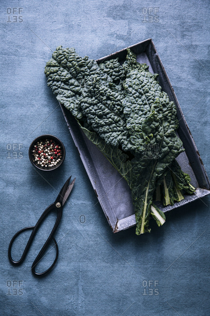 Overhead shot of kale leaves on a tray