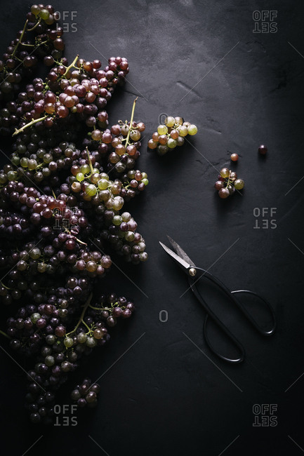 Piles of grapes on a black background