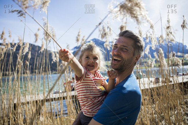Austria- Tyrol- Walchsee- happy father carrying daughter in reeds at the lakeshore