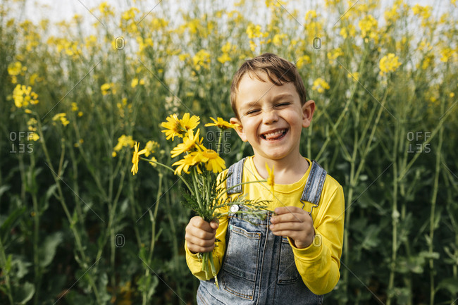Portrait of little boy with picked yellow flowers in nature