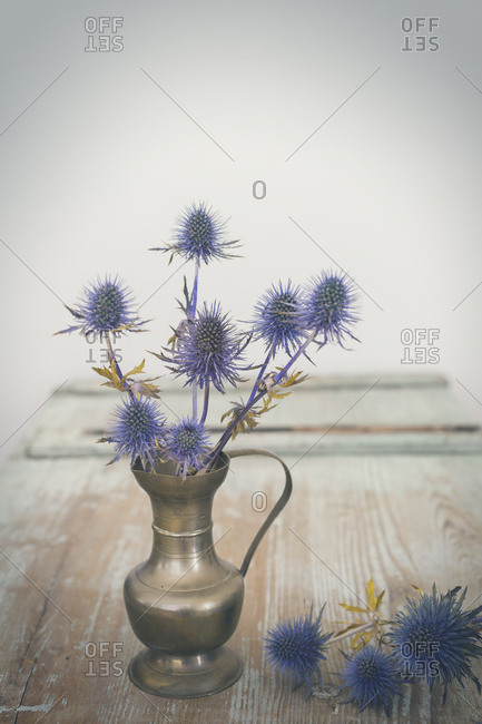 Blue Thistles in a vase