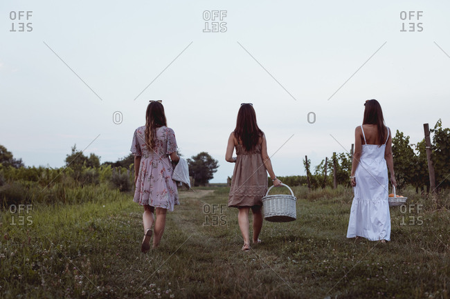 Friends walking to vineyard carrying picnic baskets