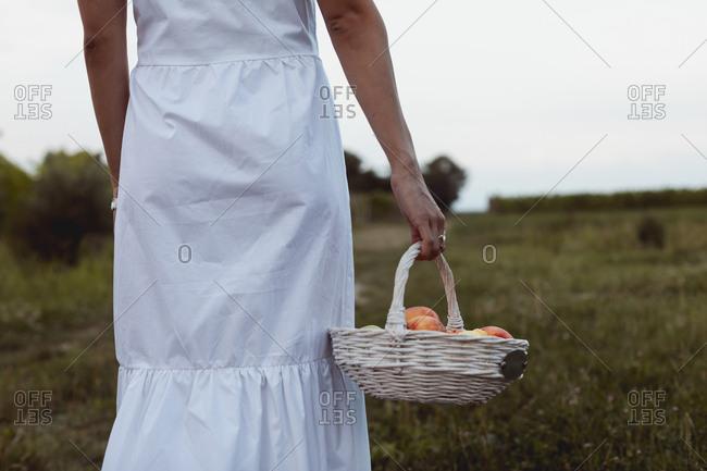 Woman walking to vineyard carrying picnic basket