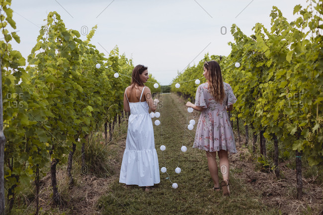 Young women decorating vineyard with fairy lights for a picnic