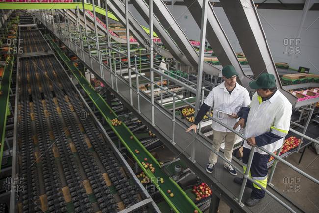 Workers talking in apple factory