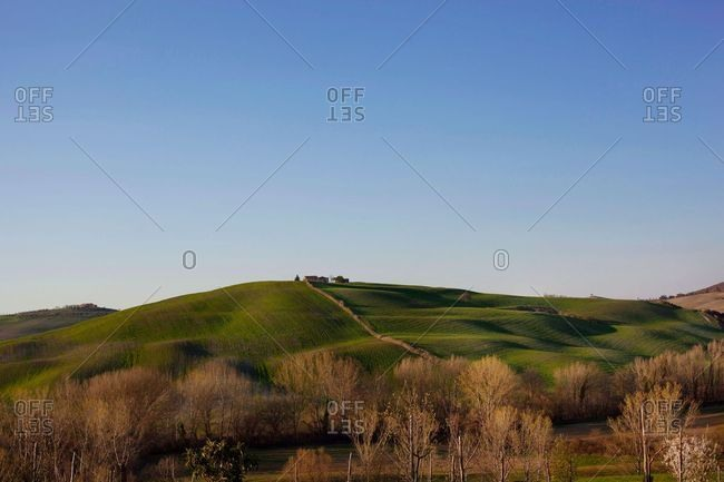 Hillside in the Tuscany countryside, Italy