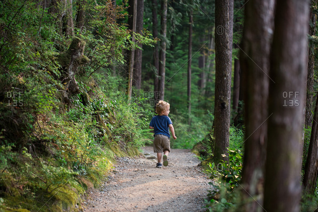 Toddler boy walking on hiking trail in the forest