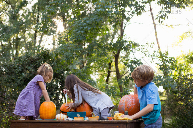 Children carving and scooping out pumpkins together