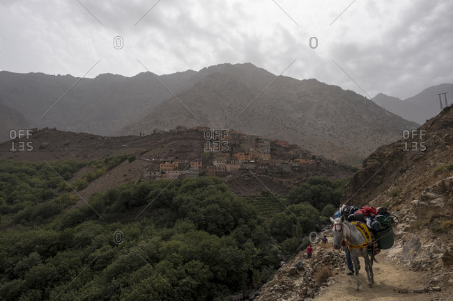 Imlil, Morocco - 26 September 2017: Donkey carrying trekkers luggage up in the Atlas mountains