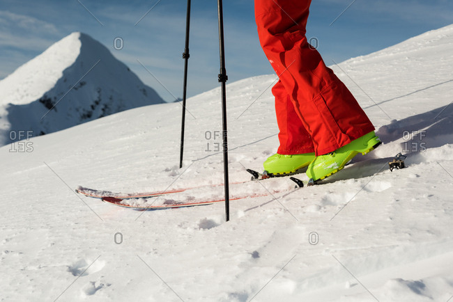 Low section of male skier walking with ski board on a  snowy mountain