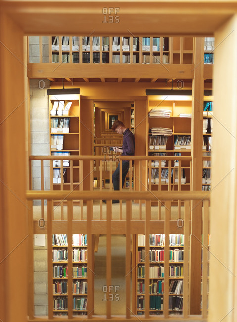Side view of college student reading a book in library