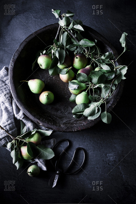 Still life of pears in a wooden bowl