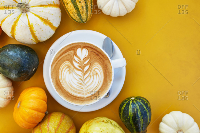 Freshly brewed latte served alongside mini pumpkins and gourds