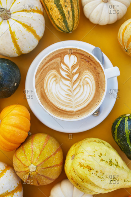 Freshly brewed latte surrounded by decorative gourds