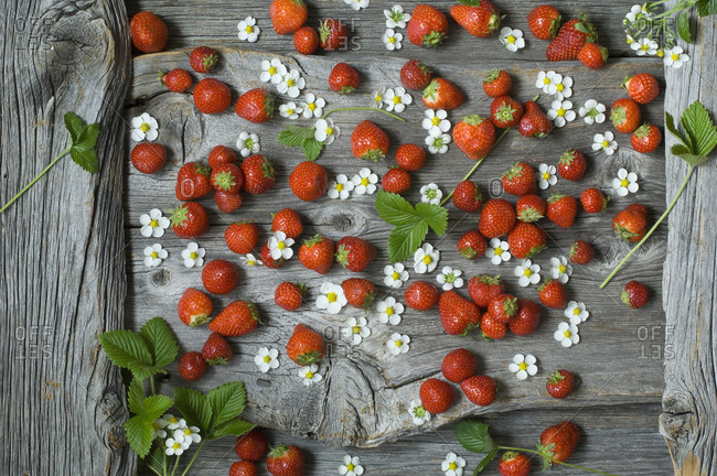 Strawberries and blossoms on wood