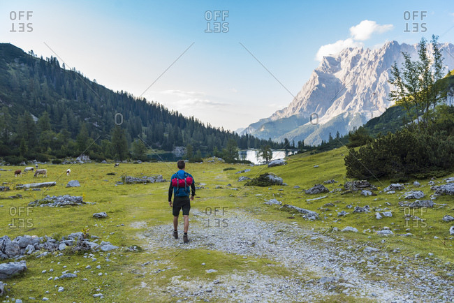Austria, Tyrol, Hiker with backpack, hiking at Lake Seebensee