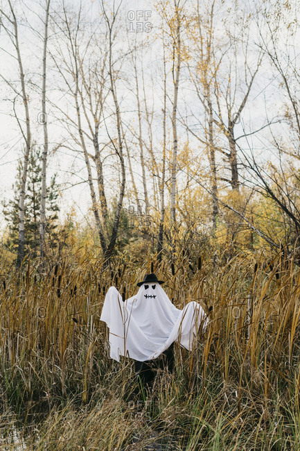 Person dressed up as a ghost standing in a field filled with long grass