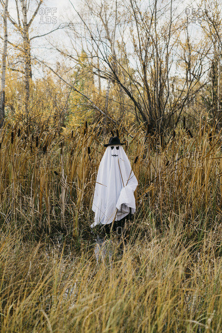 Person dressed up as a ghost standing in a field in the fall