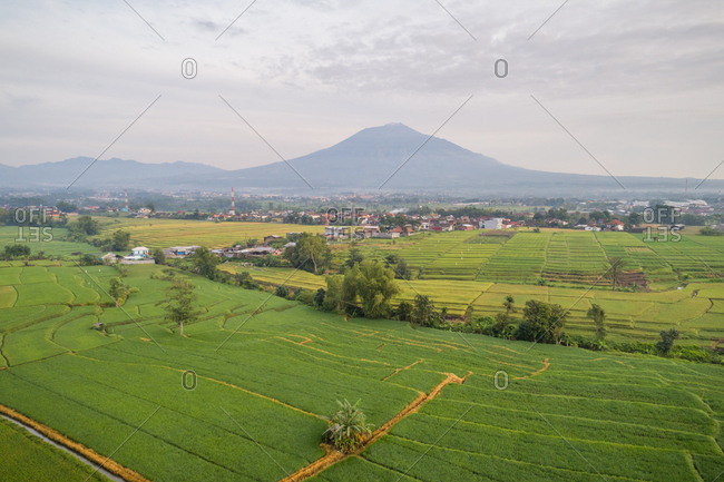 Aerial panoramic view of rice fields, towns and mountains near Patraland, Indonesia