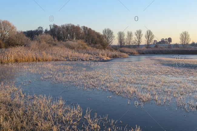 Frozen lake in winter, Reinheimer Teich, Reinheim, Hesse, Germany
