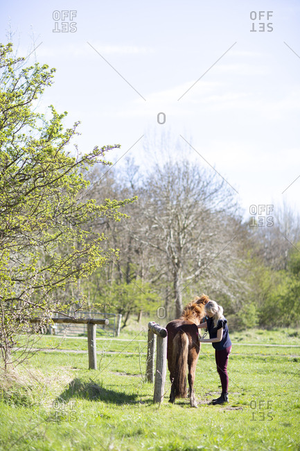 Side view of woman brushing horse while standing on grassy field during sunny day