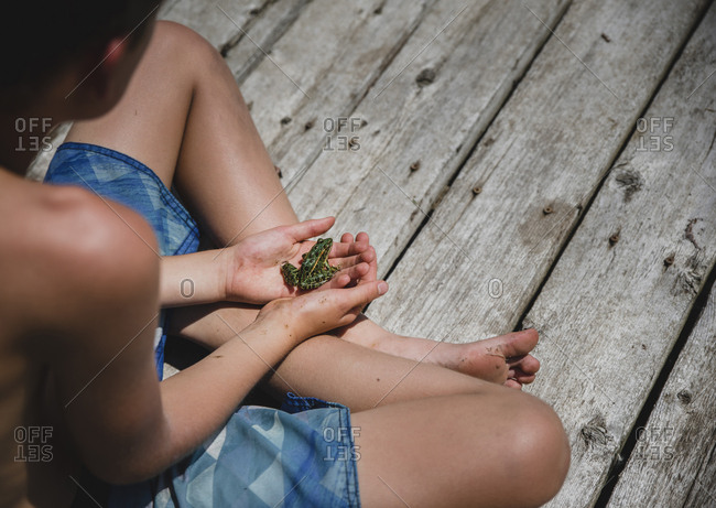 High angle view of shirtless boy holding frog while sitting on wooden pier