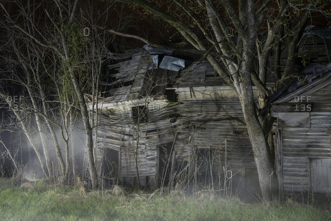 Broken wooden building by bare trees in forest during foggy weather at night