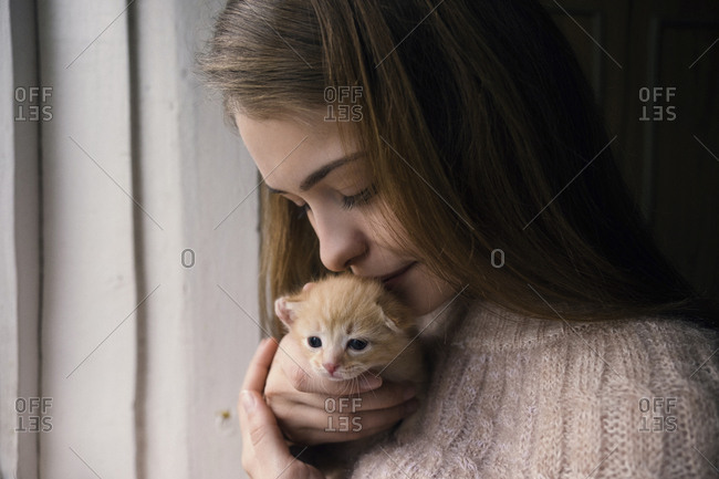 Close-up of woman kissing cute kitten while standing by window at home