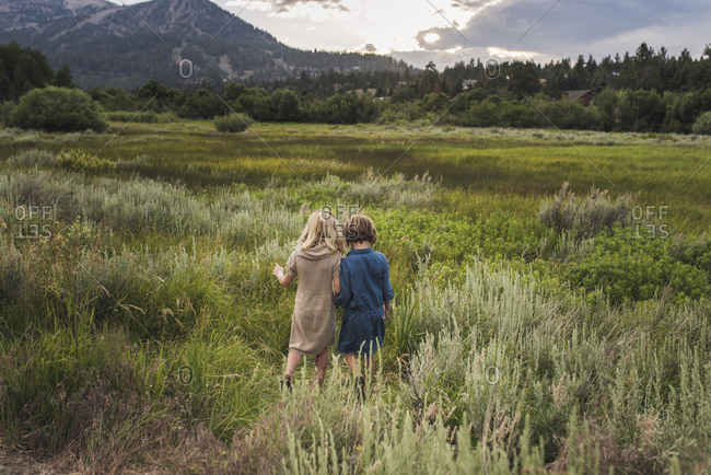 Rear view of sisters walking on grassy field against sky in forest during sunset