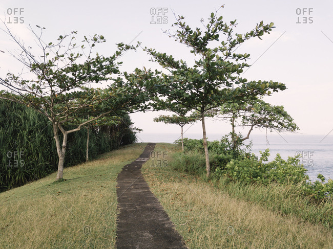 Diminishing perspective of footpath amidst grassy field by sea against sky at Bali
