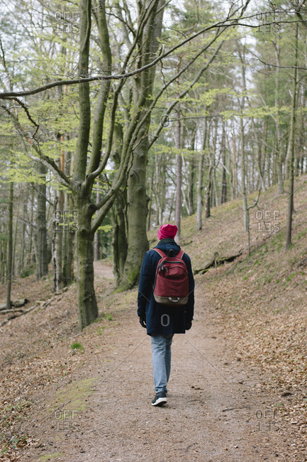 Rear view of man with backpack walking on field in forest