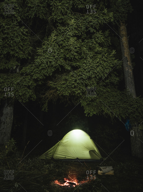Illuminated tent on field against trees in forest