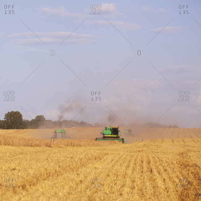Tractors harvesting wheat fields
