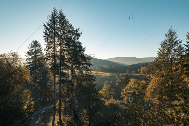 Sun rising over hilly forest